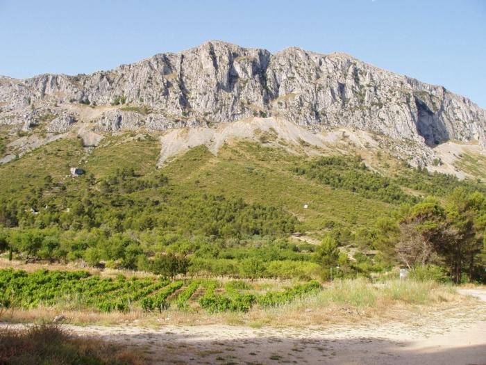 Altea dóna carpetada a la urbanització de Serra Alta