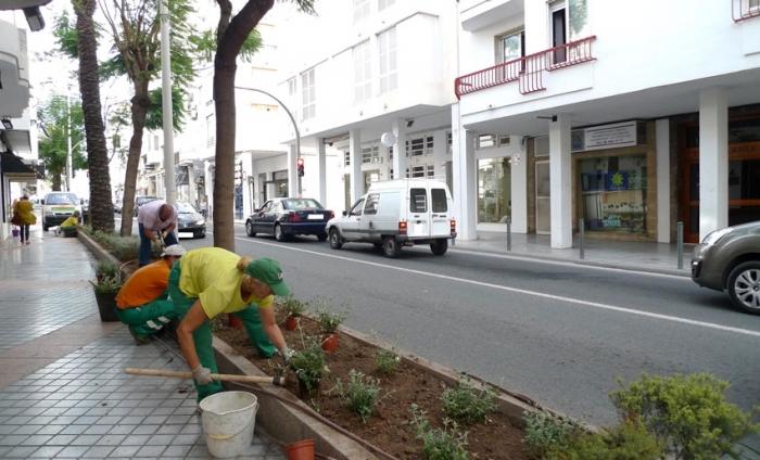 La PDM realitza treballs de replantació a les jardineres de Conde d'Altea i el Passeig Sant Pere