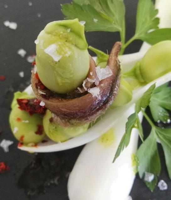 Comerç presenta les característiques de la ruta gastronòmica ''Horta de primavera''