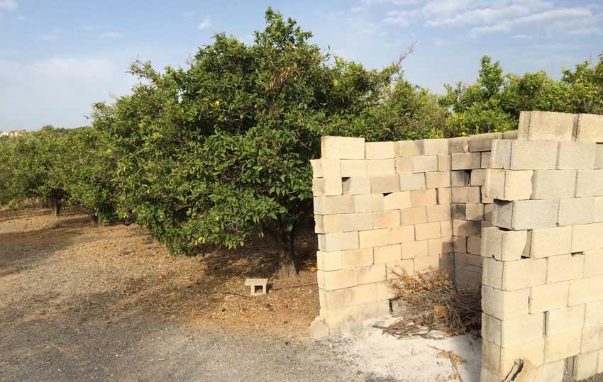 La Regidoria d'Agricultura subvenciona el triturat de restes de poda