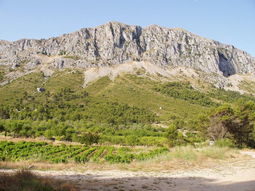 Obrin la borsa de treball per a la contractació laboral temporal de peons forestals i de conservació del Medi Natural en la Comunitat Valenciana