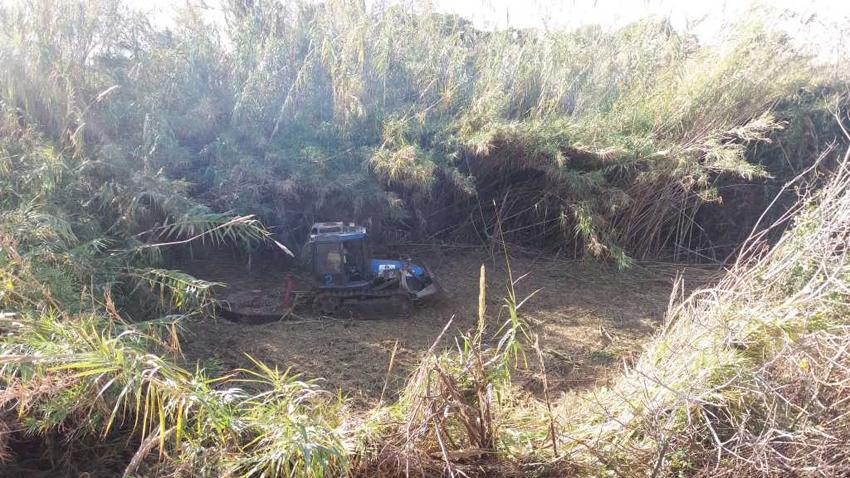 Medi Ambient informa sobre les tasques de neteja que s'estan duent a terme al Barranc dels Arcs