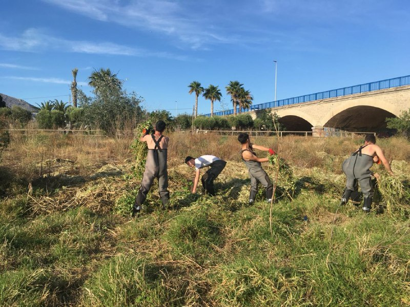 Comença la campanya de retirada de plantes invasores aquàtiques del Riu Algar