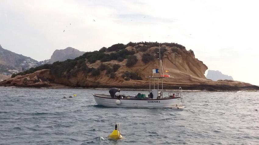 La regidoria de Medi Ambient instal·la els primers sistemes d'amarratge ecològics per evitar la degradació de les praderies de marines