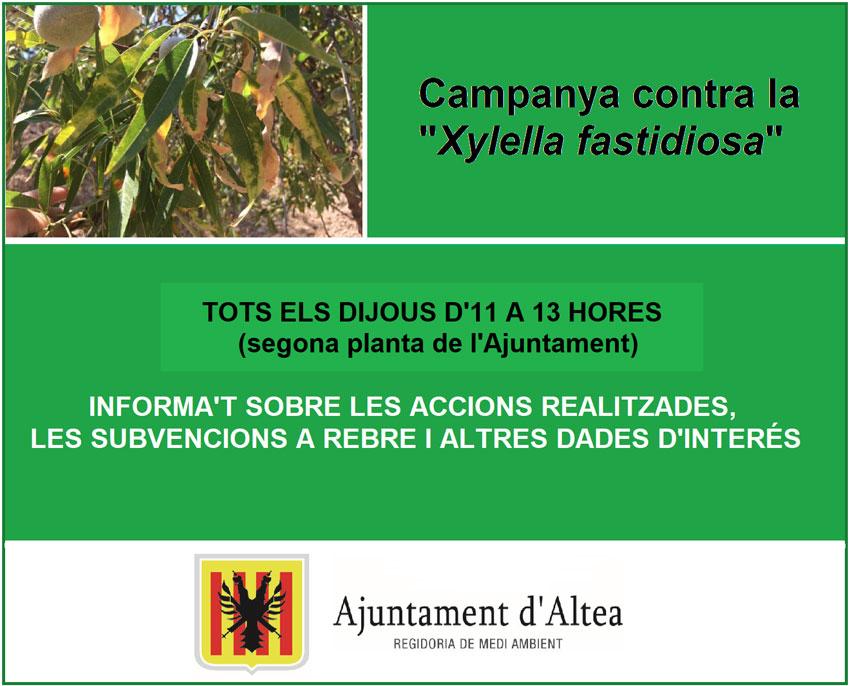 """Altea posa en marxa una campanya informativa contra la """"Xylella fastidiosa"""""""