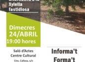 """La regidoria de Medi Ambient ha programat per a aquest dimecres 24 d'abril a les 19:00 hores, en el Centre Cultural d'Altea la Vella, la xerrada """"El cultiu de la garrofera com alternativa a la Xylella fastidiosa""""."""