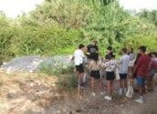 """El voluntariat ambiental de """"De Amicitia"""" participa en les tasques de manteniment del riu Algar"""