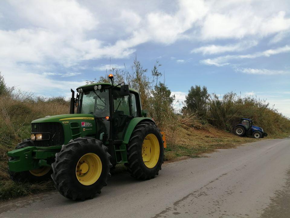 La PDM continua amb les tasques d'eliminació de canyes i el manteniment dels camins al municipi