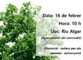 Altea celebrarà el Dia de l'Arbre amb una plantació