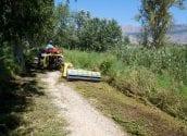 Medi Ambient informa sobre les tasques de neteja i condicionament que s'estan portant a terme al riu Algar