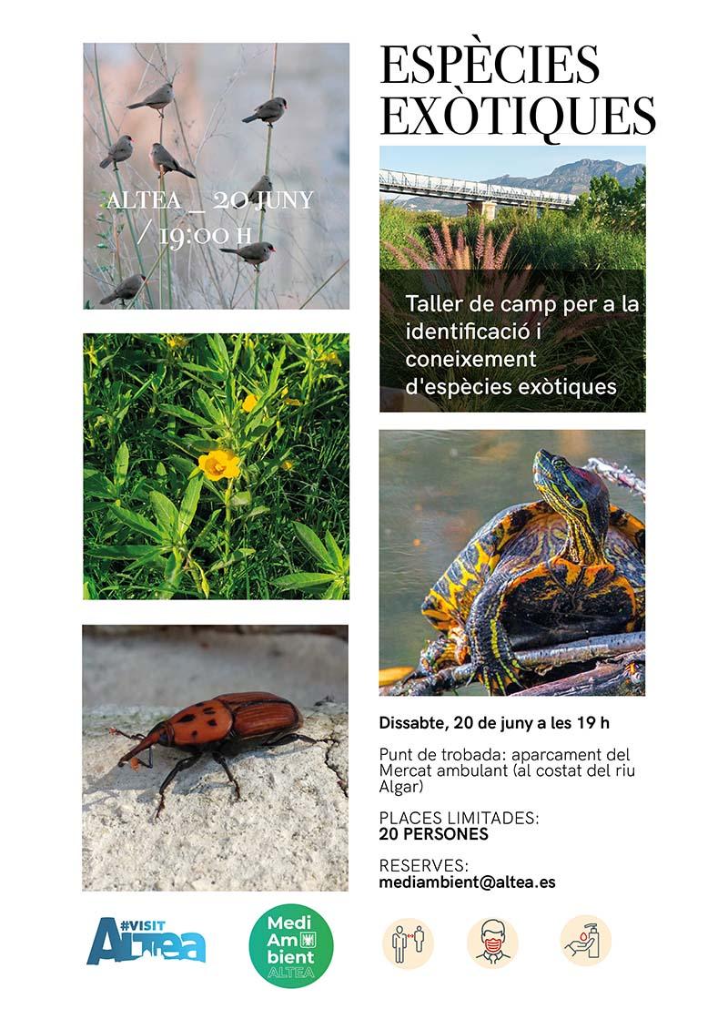 Medi Ambient i Turisme organitzen un taller per al coneixement de les espècies exòtiques