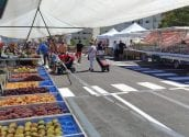 El Mercat de la Fruita i Verdura dels dimarts reduirà els seus llocs a la meitat en compliment de la resolució de Sanitat