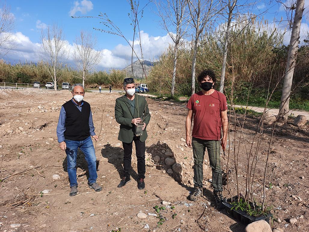 Comienza la plantación de especies de ribera que la Consellería de Transición Ecológica está llevando a cabo  en el río Algar
