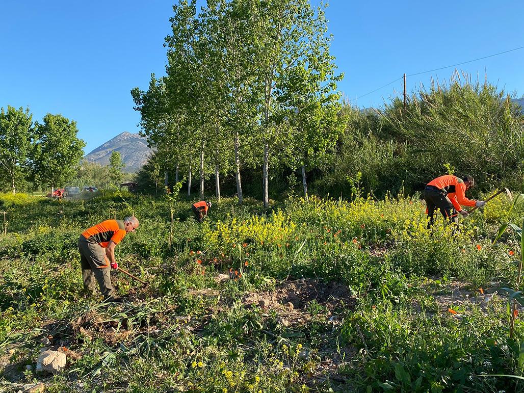 Les brigades dels parcs Serra Gelada i Penyal d'Ifac actuen en l'entorn del riu Algar