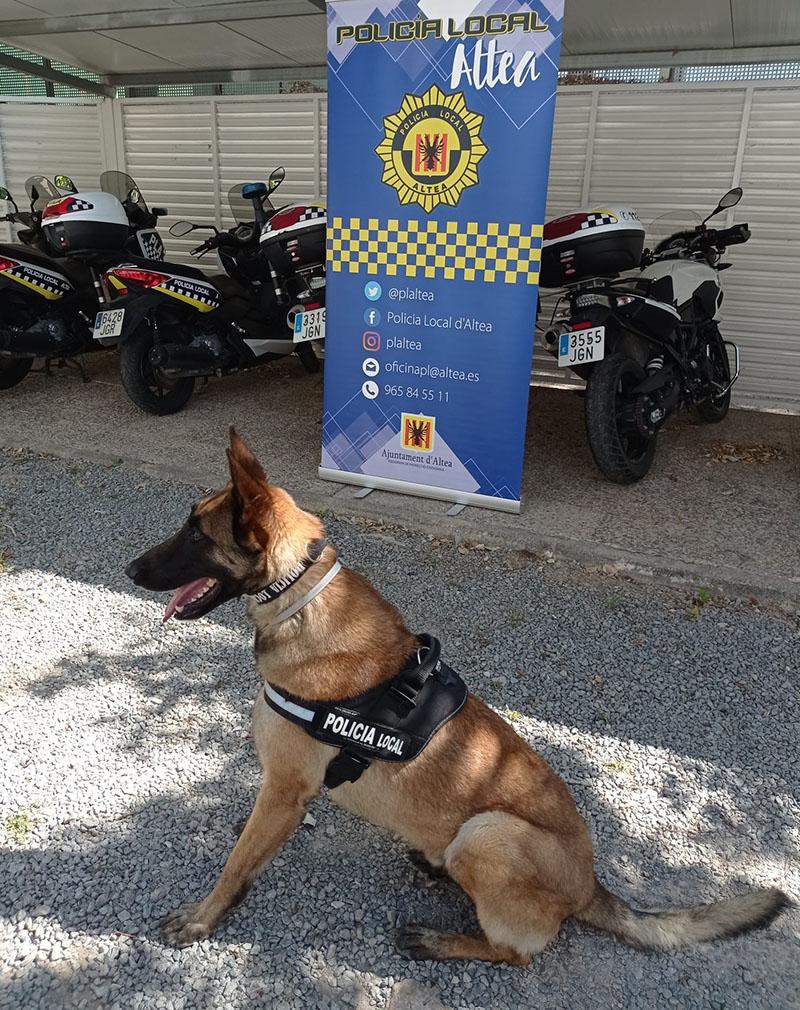 La Policia Local d'Altea estrena unitat canina