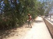 Medi Ambient Continua amb els treballs de manteniment del riu Algar