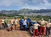 Medi Ambient posa en marxa un projecte de recuperació de vinya a l'entorn del Molí dels Moros