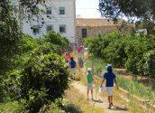Turisme anuncia el calendari de rutes guiades per Altea durant agost